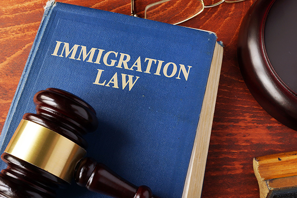 Judge gavel and immigration law book